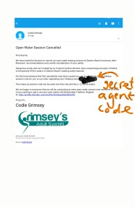Grimsey cancelled